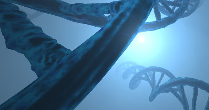 The Difference Between DNA and RNA