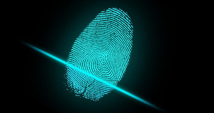Fingerprint Scanners 101: Capacitive vs. Optical vs. Ultrasonic